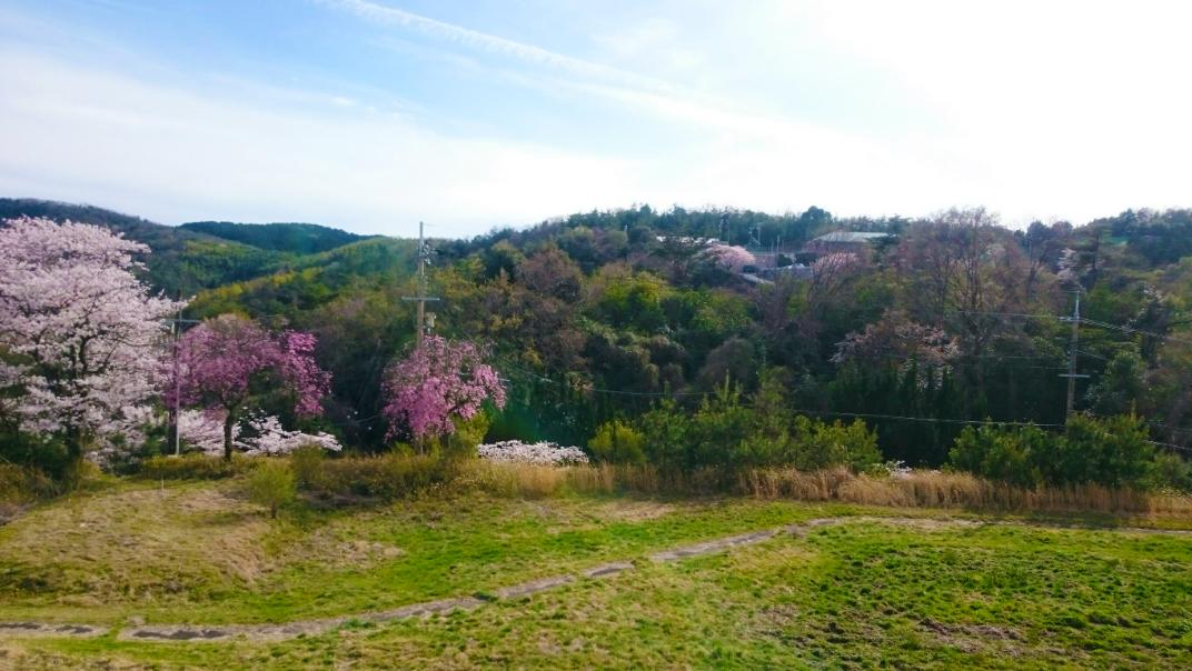 京都東山実習場の風景